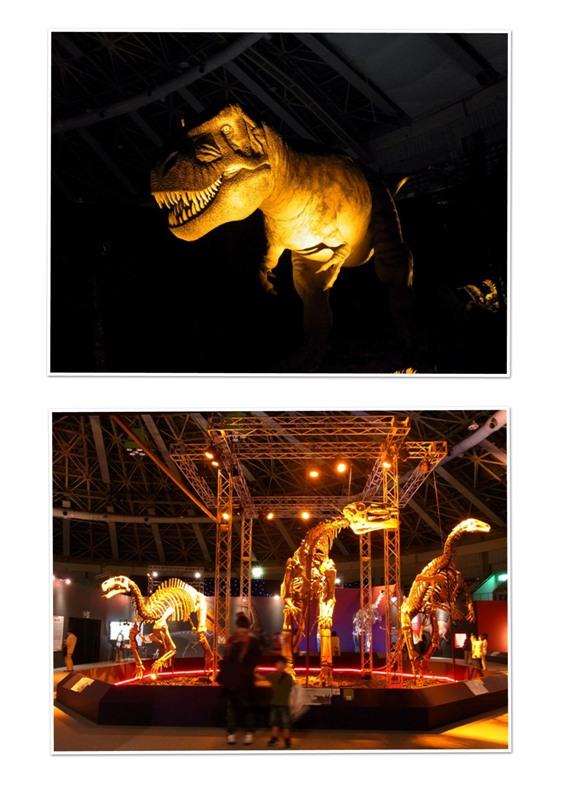 恐竜展_A