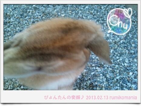 CA43LIFN.jpg