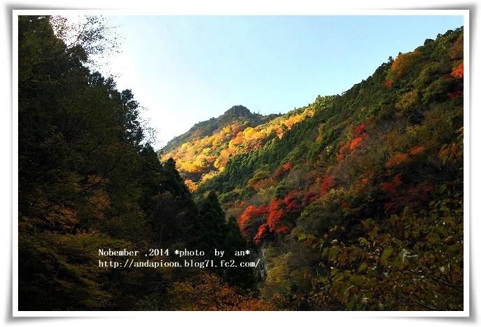20141118 IMG_3997