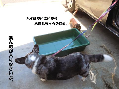 2012071805.jpg