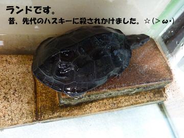 20127314.jpg