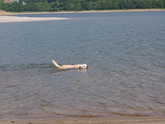 かなやま湖1