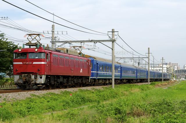 DSC_7781-1.jpg