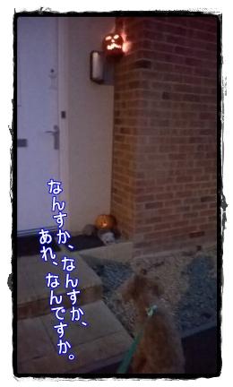 2014.10.31_5