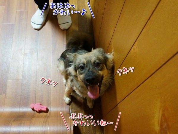 20141205_4.jpg