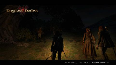 Dragon's Dogma1