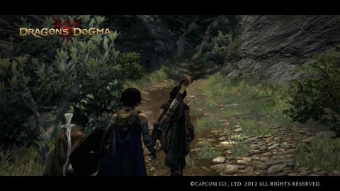 Dragon's Dogma4