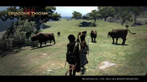 Dragon's Dogma5