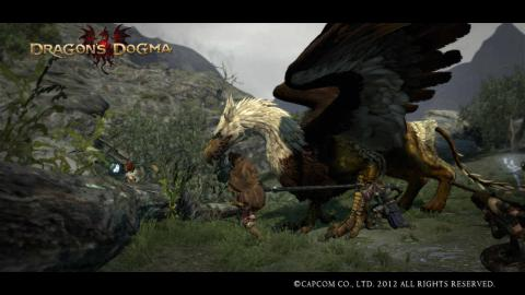 Dragon's Dogma19