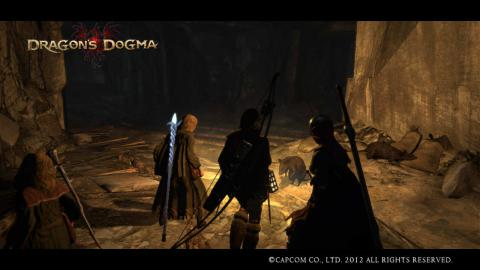 Dragon's Dogma21
