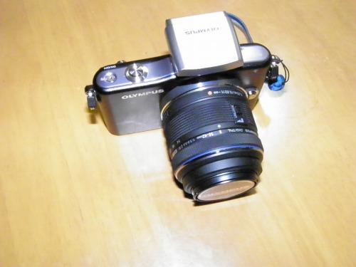 500sssP4300006.jpg