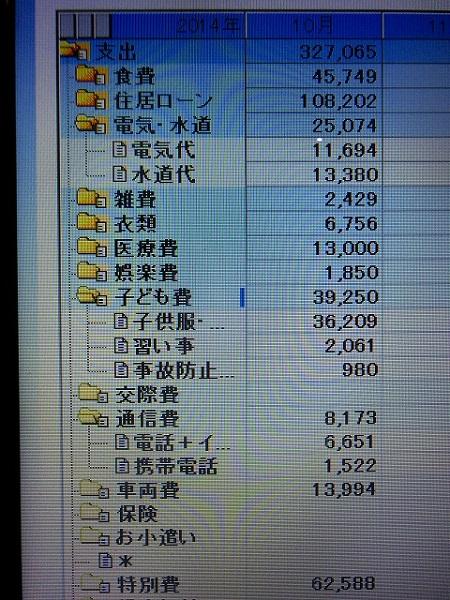 20141/11月の家計簿