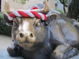 大宰府の牛