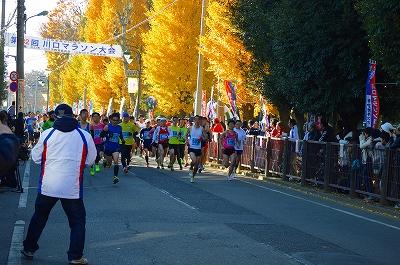 川口市民マラソン 024