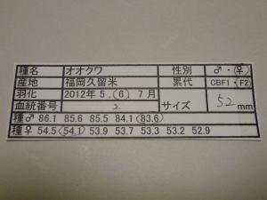 MK2011-2 528カード