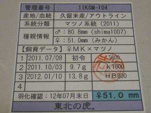 虎壱11KSM-104 510カード