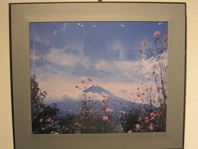 富士とコスモス~山中湖 梅津忠雄