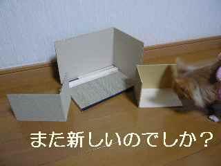 blg2012121101.jpg