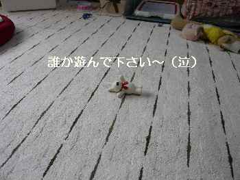 blog2012101107.jpg