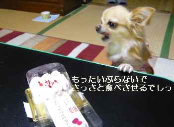 blog2012101405.jpg