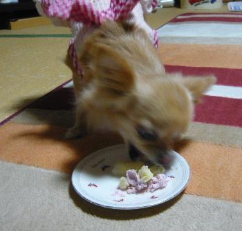 blog2012101408.jpg