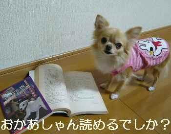 blog2012102002.jpg