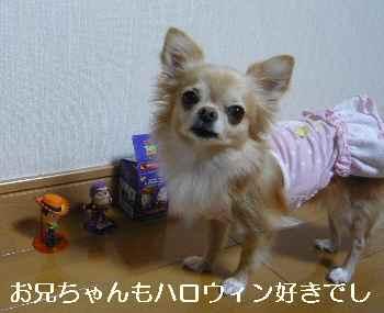 blog2012102202.jpg
