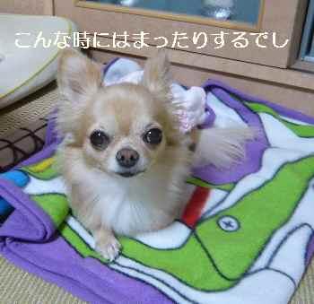 blog2012102203.jpg