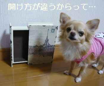 blog2012102703.jpg