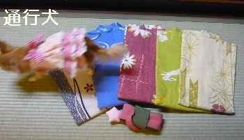 blog2012102806.jpg