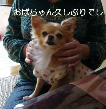 blog2012103002.jpg
