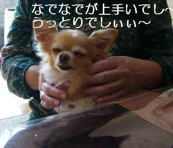 blog2012103003.jpg