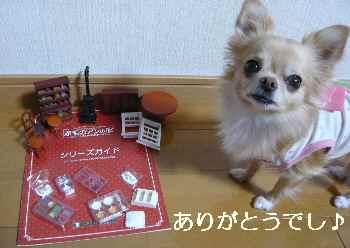 blog2012110210.jpg