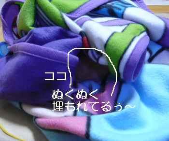 blog2012110303.jpg