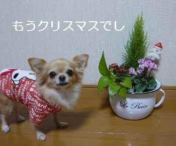 blog2012110401.jpg