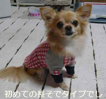 blog2012111304.jpg