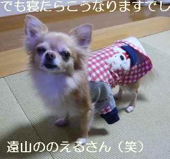 blog2012111305.jpg