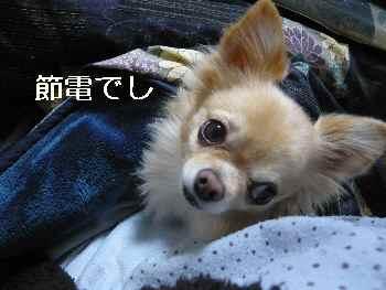 blog2012111401.jpg