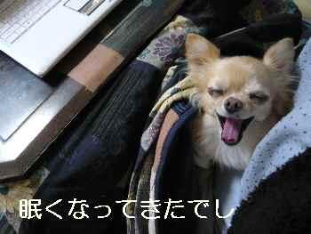 blog2012111402.jpg