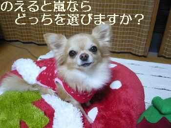 blog2012111801.jpg
