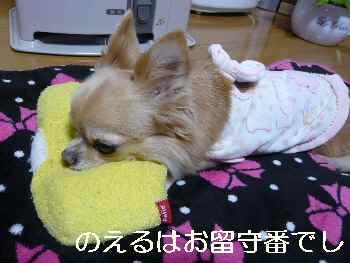 blog2012112907.jpg