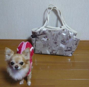 blog2012120501.jpg