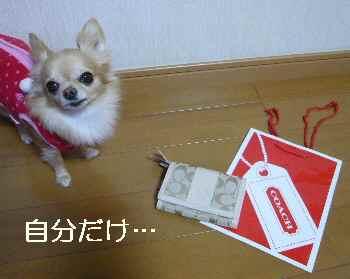 blog2012120605.jpg