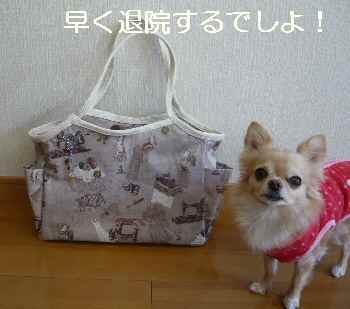 blog2012120701.jpg