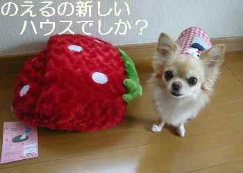 blog2012120801.jpg