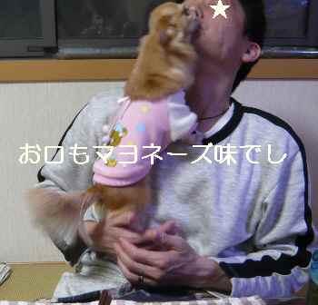 blog2012121307.jpg