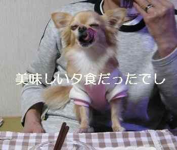 blog2012121308.jpg