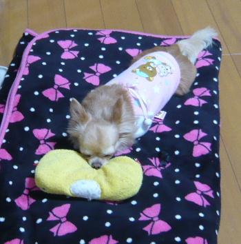 blog2012121504.jpg