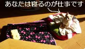 blog2012122903.jpg