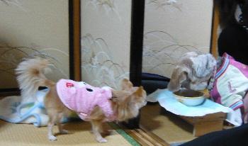 blog2013010304.jpg